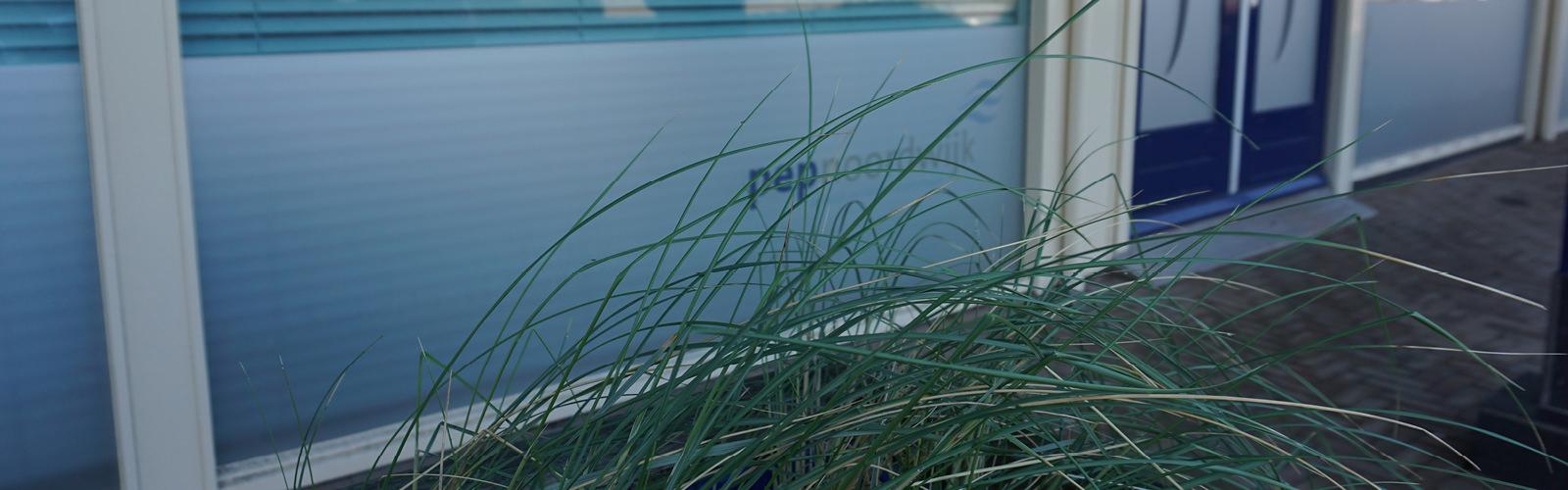 PEP Groep (PEP Noordwijk, PEP Wantveld, PEP Voorhout en PEP Celsius zijn onderdeel van de PEP groep).